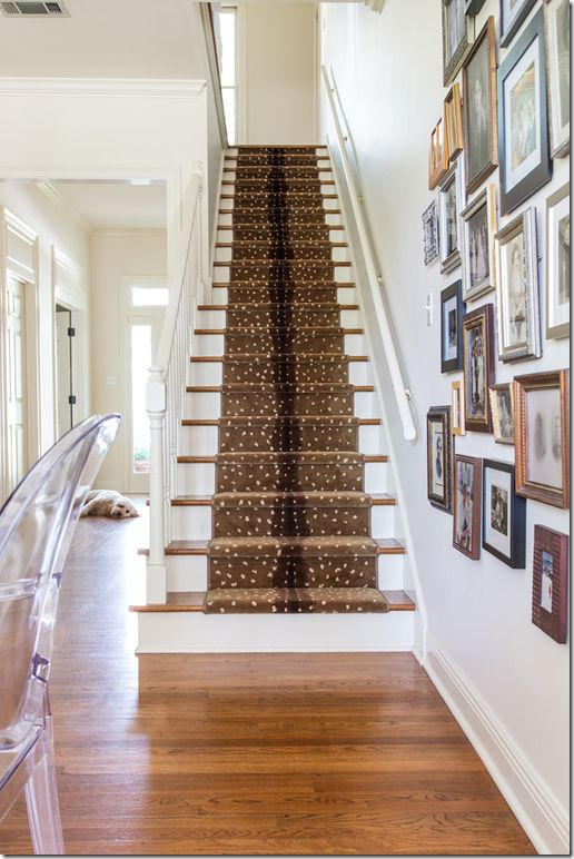 Animal Print Rug | The Style Scribe