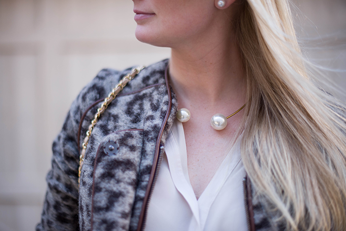 Leopard | The Style Scribe