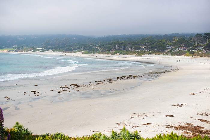 Carmel By The Sea | The Style Scribe