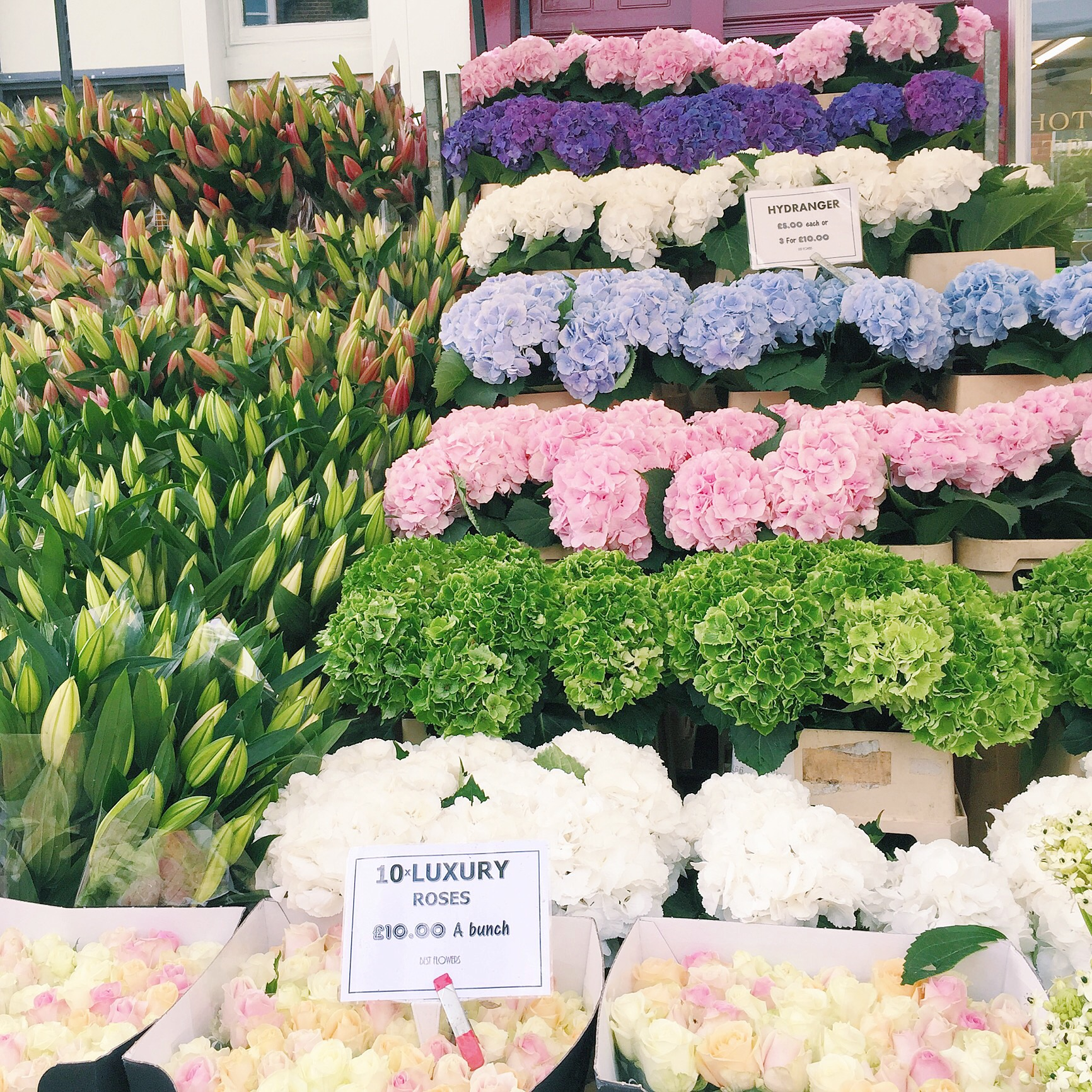 Columbia Road Flower Market, London | The Style Scribe