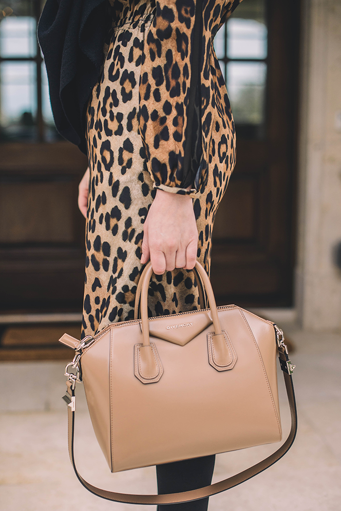 Leopard Dress | The Style Scribe