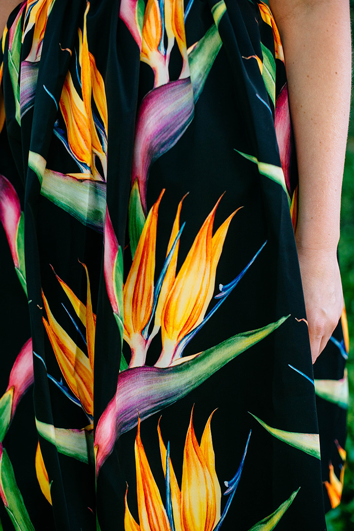 Birds of Paradise | The Style Scribe