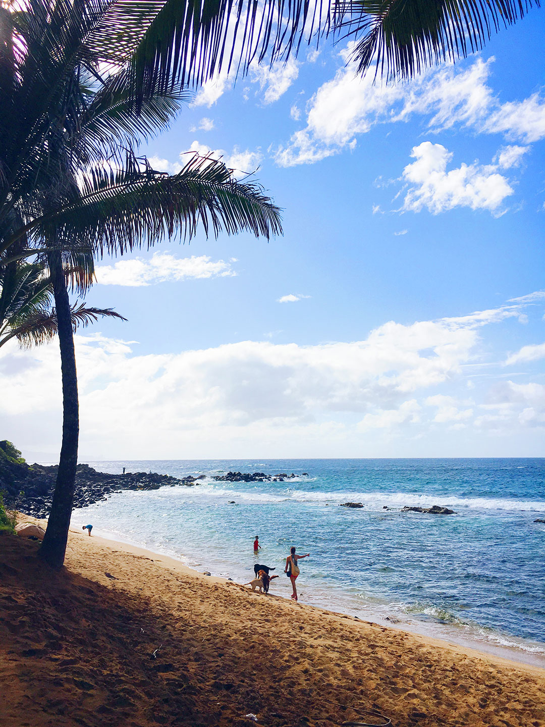 Maui luxury travel guide montage kapalua bay best for Mamas fish house dress code