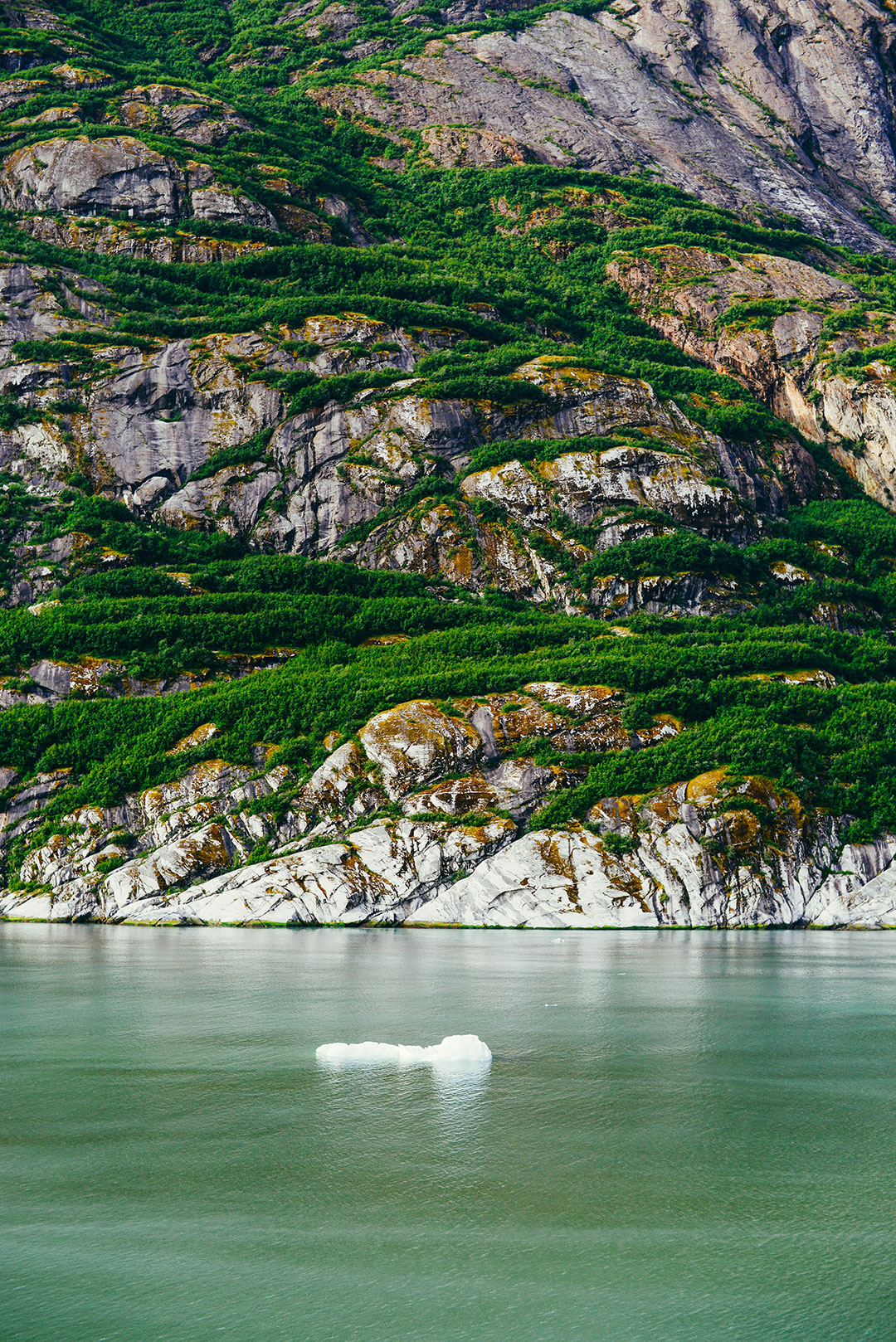 Tracy Arm Fjord + Dawes Glacier | The Style Scribe