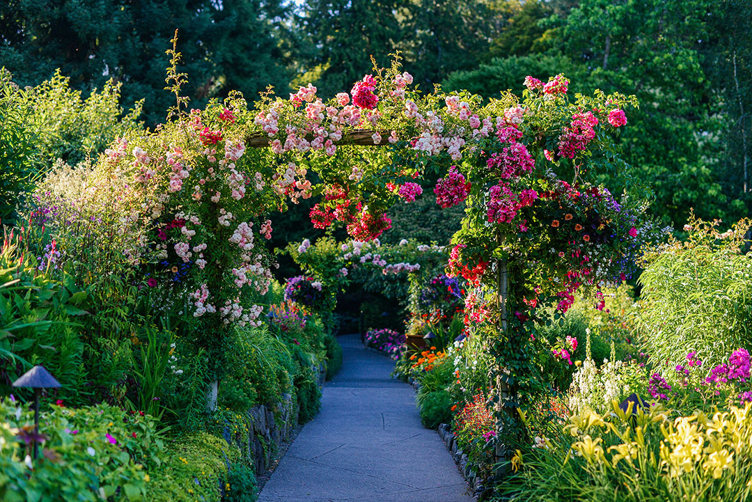 The butchart gardens the style scribe - Best time to visit butchart gardens ...