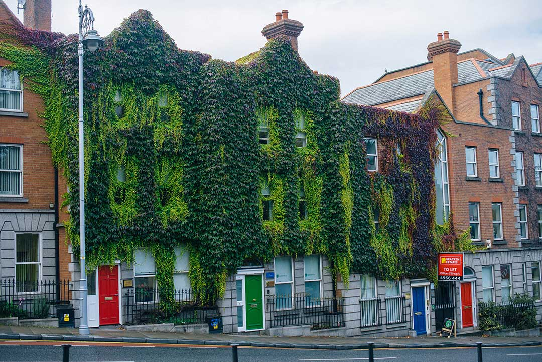 A Few Days in Ireland | The Style Scribe