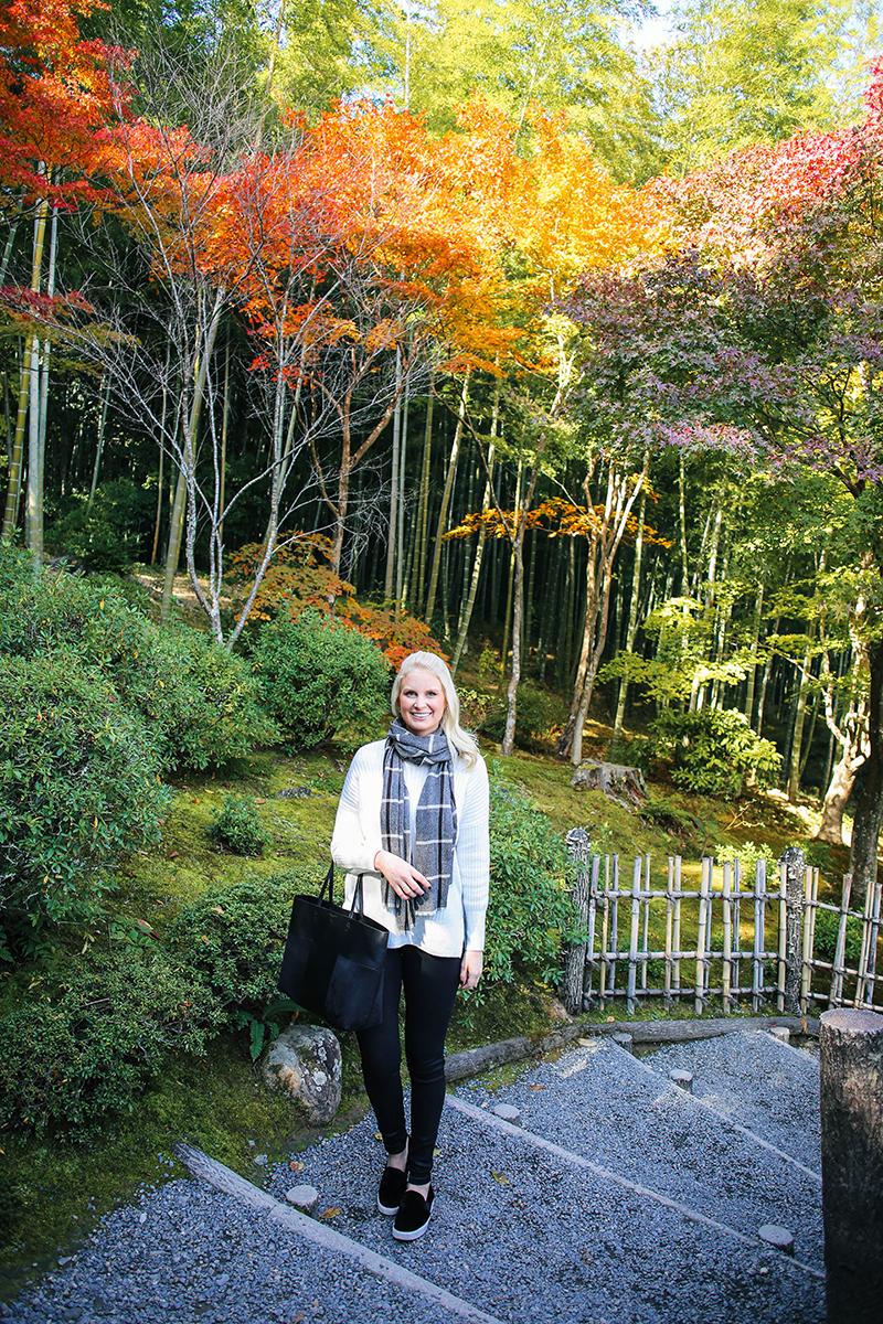 arashiyama bamboo forest gardens monkey park