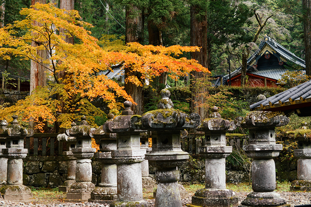 Day Trip To Nikko | The Style Scribe