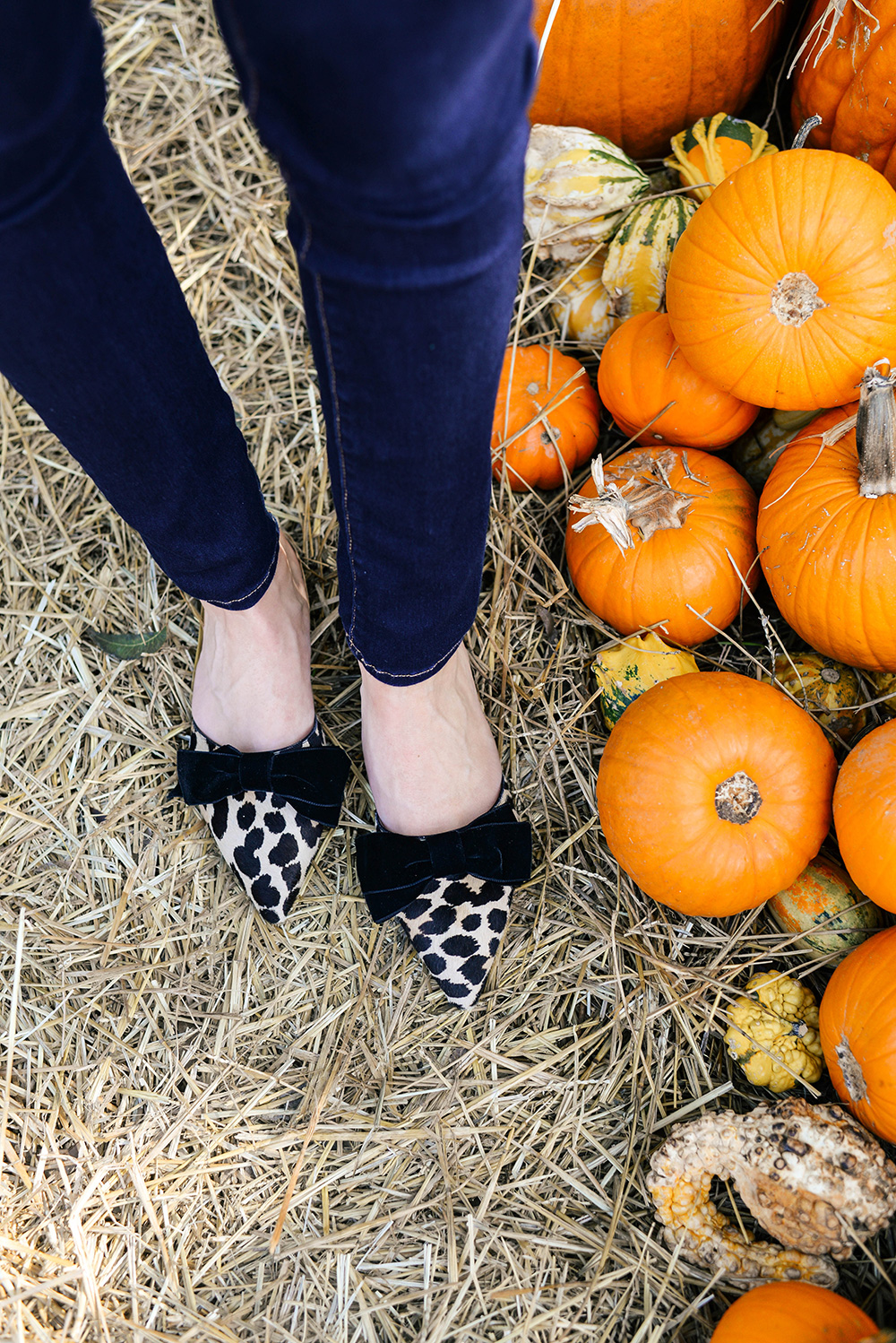 Kate Spade New York Leopard Velvet Bow Mules | The Style Scribe