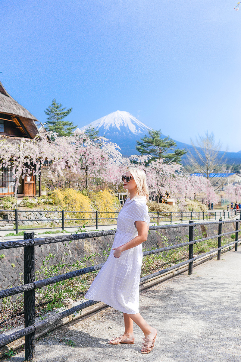 The Best Way to View & Explore Mt Fuji | Lake Kawaguchiko, Iyashi No Sato