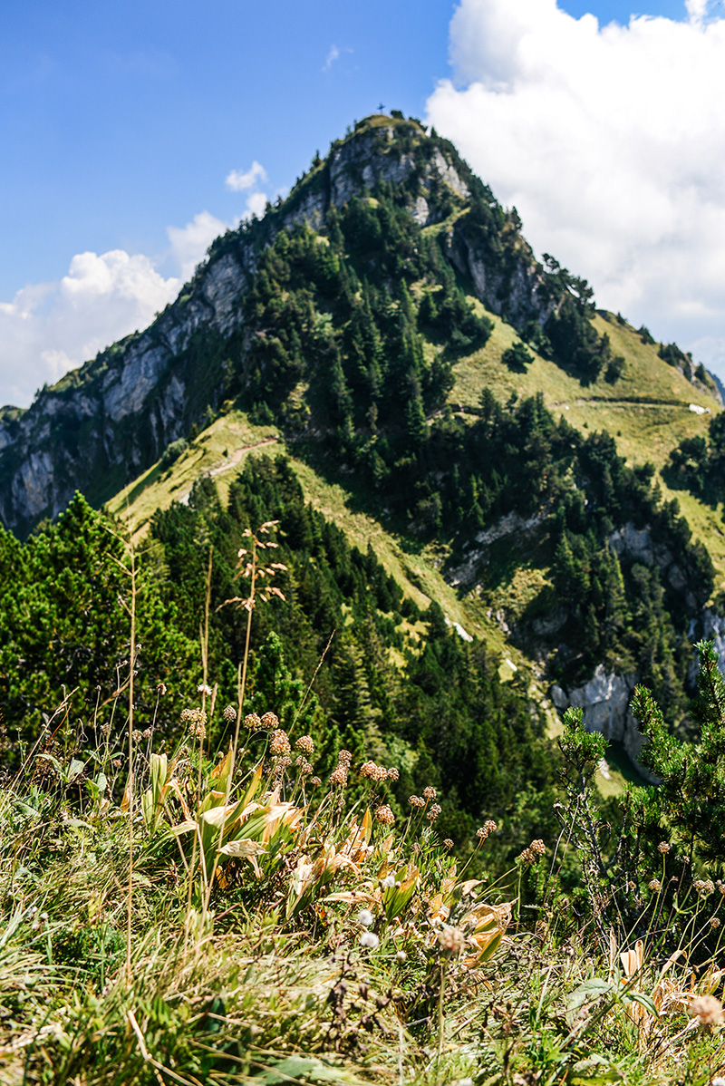 Best Hiking Trails outside of Zurich, Switzerland | Klingenstock Trail in Stoos