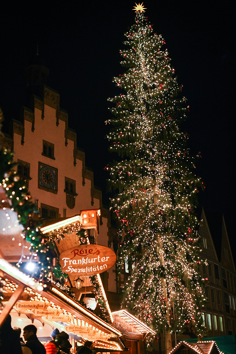 Frankfurt // Germany Christmas Markets