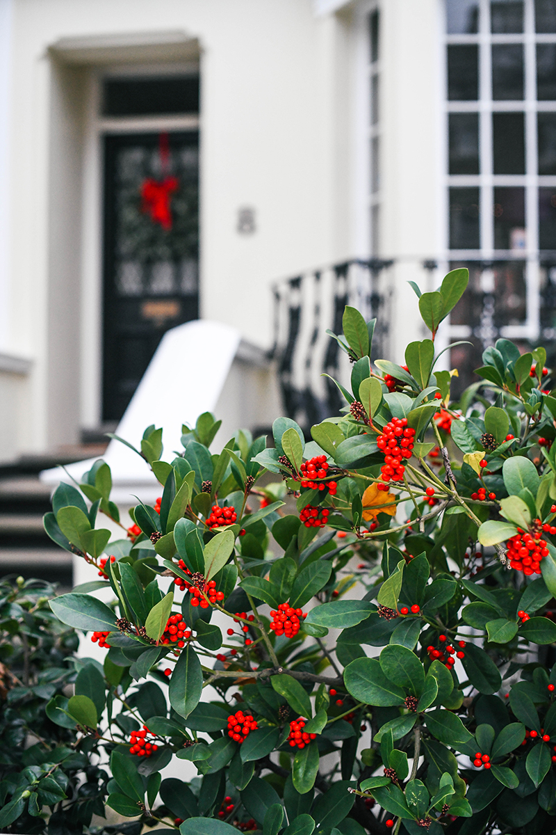 Kensington, London - photo by Merritt Beck